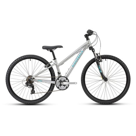 Serenity 26 Inch Wheel Silver Sample Bike (Used)